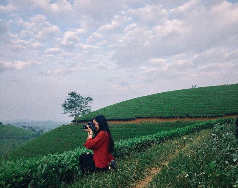 Phượt đồi chè Long Cốc Phú Thọ từ Hà Nội