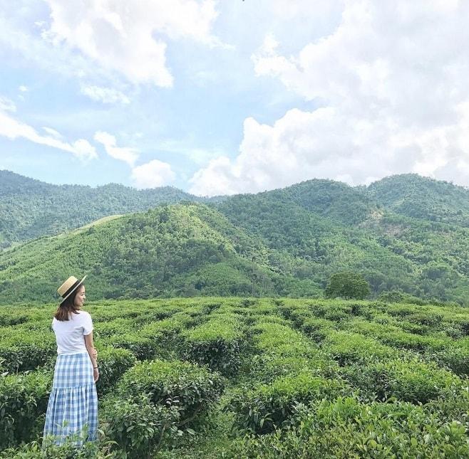 Phượt đồi chè Đông Giang có gì hấp dẫn?
