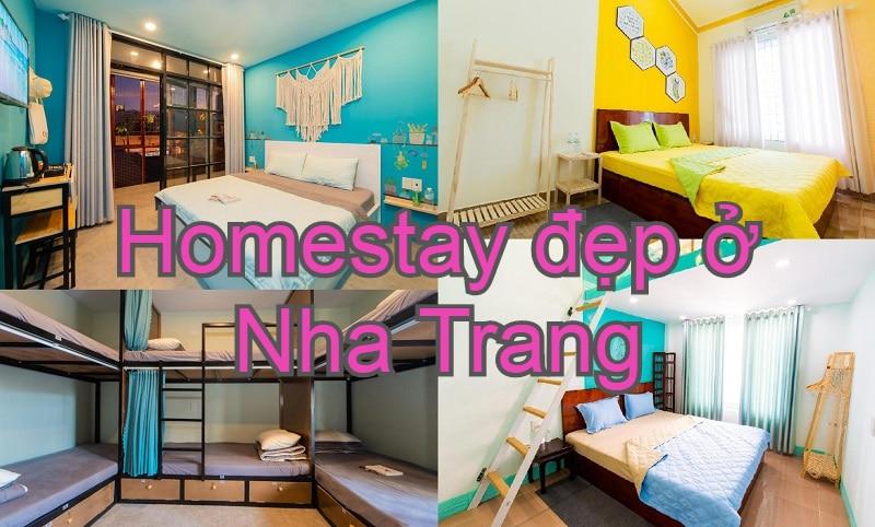 Homestay giá rẻ, gần biển Nha Trang. Nên ở homestay nào Nha Trang? Megi Homestay